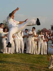 1263-CapoeiraWiki