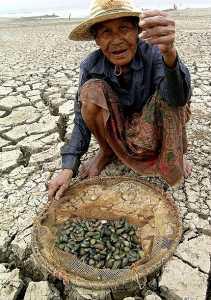 Dans le sud-ouest de la Chine, les paysans désespérés par la sécheresse